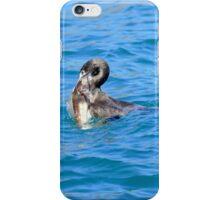 An Opportunity - Shag & Blue Cod - NZ iPhone Case/Skin