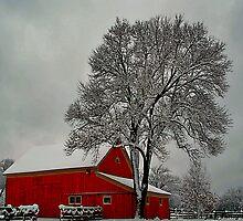 Winter Scene by john403