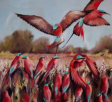 Carmine bee eaters  by Nicole  Sanderson