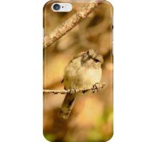 A Little Poser - Grey Warbler NZ iPhone Case/Skin