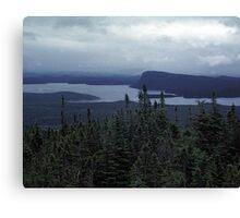 Wilderness Storm Canvas Print