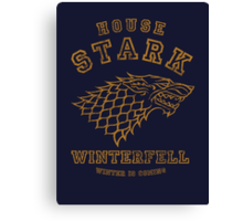 HOUSE STARK 1 Canvas Print