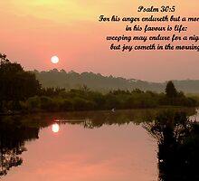 Psalm 30:5 by Michael Reimann
