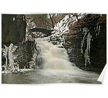 Stewart Falls Poster