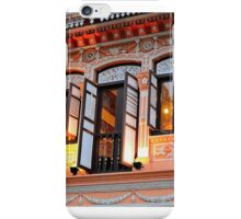 Ornamental Windows iPhone Case/Skin