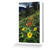 Hells Canyon Wild Flower Greeting Card