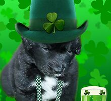 ♥‿♥ DO U EVER FEEL AFTER A FEW DRINKS YOUR SEEING WAY TOO MANY SHAMROCKS?? ♥‿♥ by ✿✿ Bonita ✿✿ ђєℓℓσ