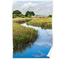 Blue Creek in Green Marsh Poster
