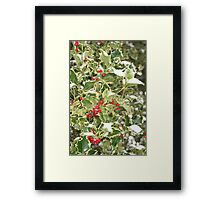 """Snow and Holly"" Framed Print"