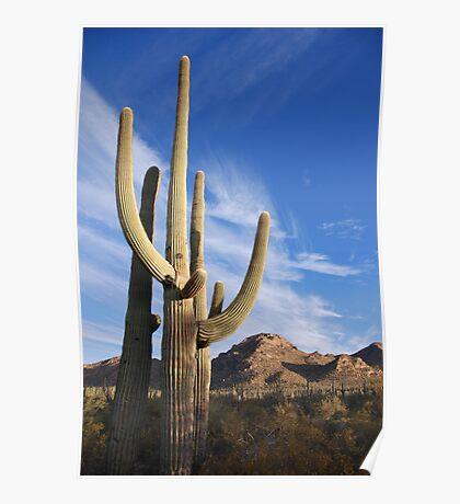 Good Morning Tucson  Poster