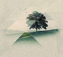 Treeangle by Alyn Spiller