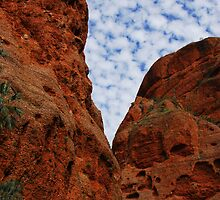 Outback Australia by Limitlessonline