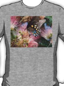 Pipevine Swallowtail Butterfly in Mimosa's Silky Blossoms T-Shirt