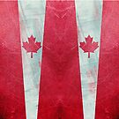 Canadian flag  leather by filippobassano