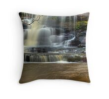 Muddy Waters - Somersby Falls, NSW Throw Pillow
