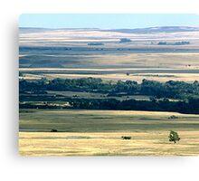 Faces of the Prairies Canvas Print