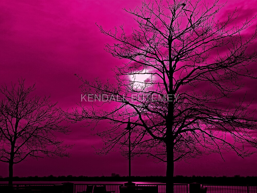 CRAB APPLE SKIES by KENDALL EUTEMEY