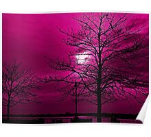 CRAB APPLE SKIES Poster