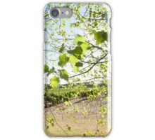 Light and Airy, Leaf and Fairy iPhone Case/Skin