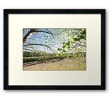 Light and Airy, Leaf and Fairy Framed Print