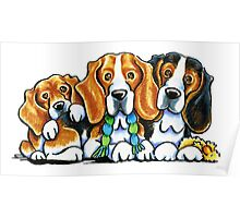 3 Beagles Poster