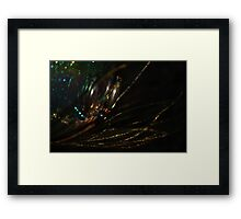 Sensations Framed Print