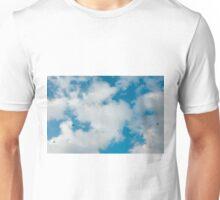 sky, cloud and birds Unisex T-Shirt