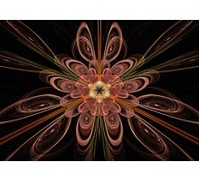 Fractal 23 Photographic Print