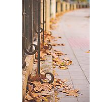 Fall in the city Photographic Print