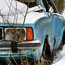 5.3.2015: Abandoned Car II by Petri Volanen