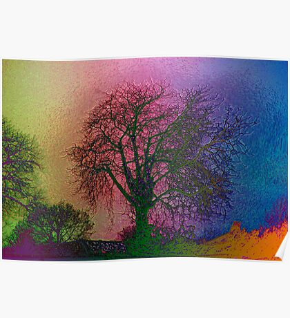 Bare Trees  Poster