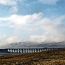 The colour of winter in the dales by clickinhistory
