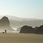 Footprints in the Sand by Randall Scholten