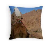 Ship of Sinai Throw Pillow