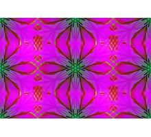Frosted Cranberry Glass Photographic Print