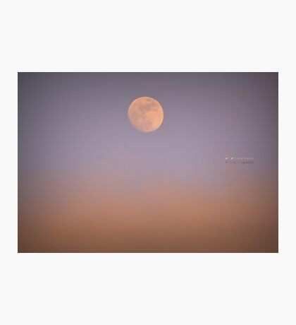 """ Moonrise Over Alpenglow "" Photographic Print"