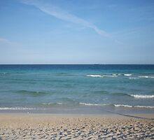 Miami Beach by Jessica Leavitt
