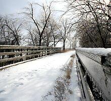 Wabash Trace Bridge by jbears