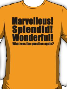 Marvellous! Splendid! Wonderful! (B) T-Shirt