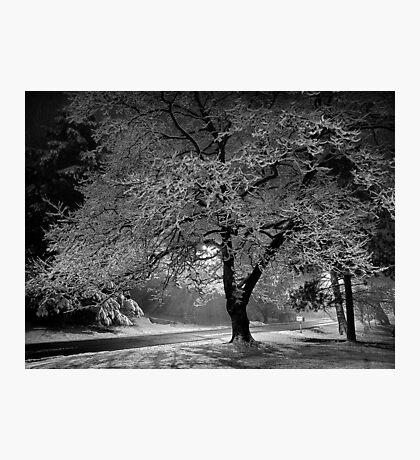 Winter Morning - Erie, PA Photographic Print