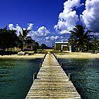 Dock At Hopkins by Brian Walter