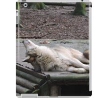The Sky Is Beautiful And So Are You iPad Case/Skin