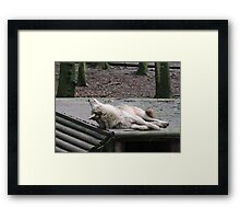 The Sky Is Beautiful And So Are You Framed Print