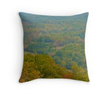 Scenic Valley Throw Pillow
