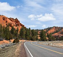 Into Red Canyon by Nickolay Stanev
