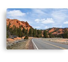 Into Red Canyon Canvas Print