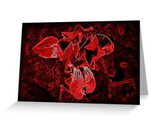 Red Iris Morning Greeting Card