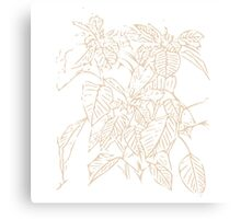 The Plant (white gold) Canvas Print