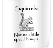 Squirrels Speed Bumps Poster