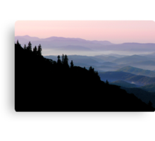 Soft Morning Canvas Print